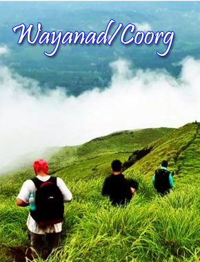 1 wayanad copy
